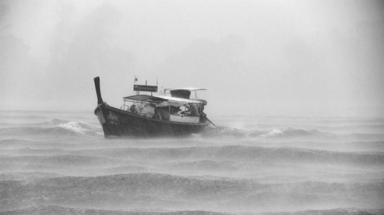 Emergency Funds: Weathering the Storm